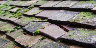 Staffordshire roof repair costs